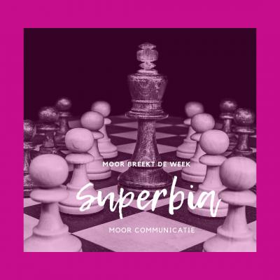 Superbia: hoogmoed en ijdelheid